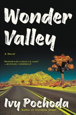 book-cover-Wonder-Valley