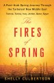 The fires of spring : a post-Arab Spring journey through the turbulent new Middle East