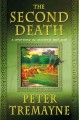The second death : a mystery of ancient Ireland