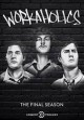 Workaholics. The final season [digital videodisc]