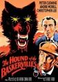 The hound of the Baskervilles [digital videodisc]