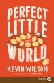 Perfect little world [text(large print)]: a novel