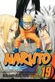 Naruto. Vol. 19, Successor