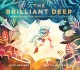 The brilliant deep : rebuilding the world