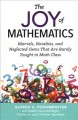 The joy of mathematics : marvels, novelties, and neglected gems that are rarely taught in math class