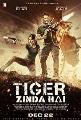 Tiger Zinda Hai [videorecording (DVD)]