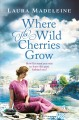 Where the wild cherries grow : a novel of the South of France