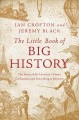 The little book of big history : the story of the universe, human civilization, and everything in between