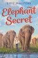 Elephant secret [eBook]