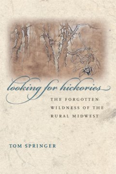Looking For Hickories:  The Forgotten Wildness Of The Rural Midwest