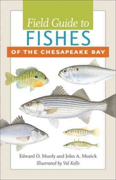 Field Guide to Fishes of the Chesapeake Bay