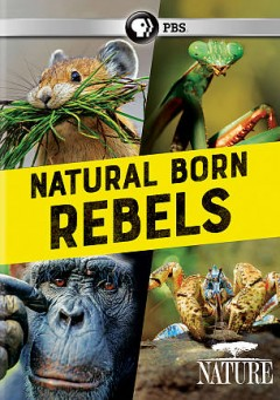 NATURE: NATURAL BORN REBELS