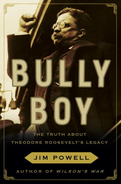 Bully Boy: The Truth About Theodore Roosevelt's Legacy cover