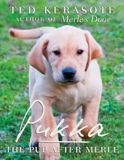 Pukka: The Pup After Merle cover