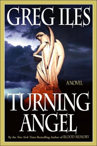 Turning Angel: A Novel cover