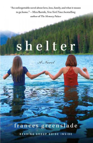 Shelter: A Novel cover