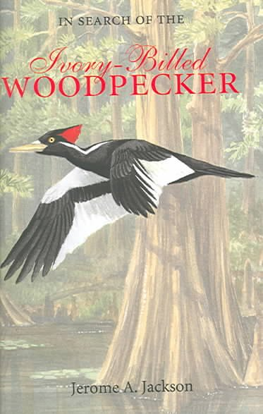 In Search of the Ivory-Billed Woodpecker cover
