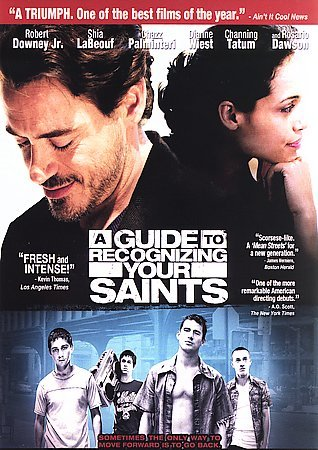A Guide to Recognizing Your Saints cover