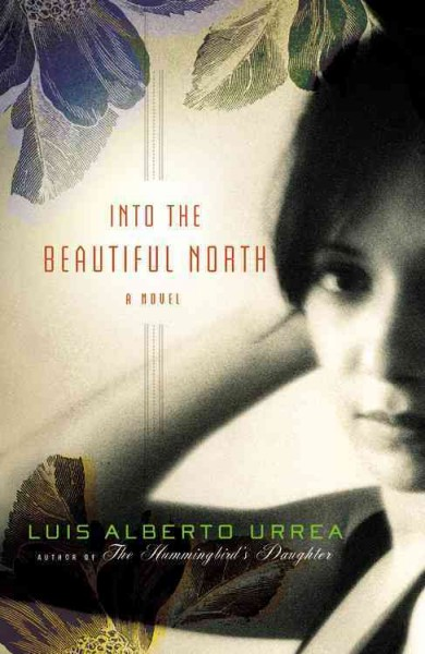 Into the beautiful North : a novel