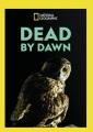 Dead by dawn [videorecording].