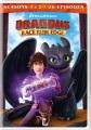 Dragons, race to the edge. Seasons 1 & 2 [videorecording]