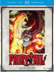 Fairy tail. Collection nine [videorecording]
