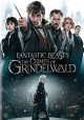 Fantastic beasts [videorecording] : the crimes of Grindelwald