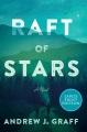 Raft of stars [large print] : a novel
