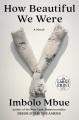 How beautiful we were [large print] : a novel