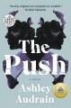The push [large print] : a novel