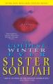The coldest winter ever : a novel