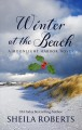 Winter at the beach [large print]