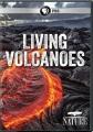 Living volcanoes [videorecording]