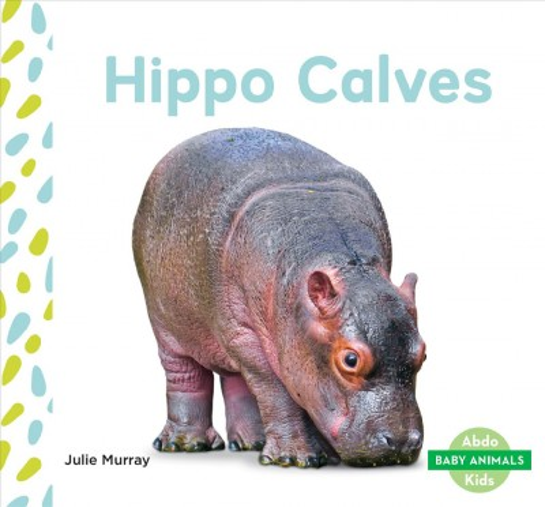 Hippo Calves