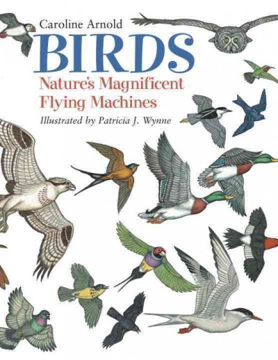 """Image of book cover depicting a variety of birds in flight. Text reads """"Caroline Arnold. Birds - Nature's Magnificent Flying Machines - Illustrated by Patricia J. Wynne"""