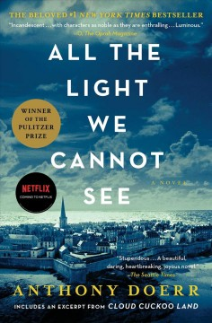 "Book cover of a European City with a blue filter. Text reads ""All the Light we Cannot See by Anthony Doerr"""