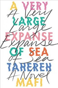 A Very Large Expanse of Sea book cover