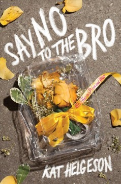 Say No to the Bro book cover
