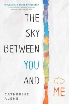 """book cover """"The Sky Between You and Me"""" by Catherine Alene"""