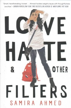 Love Hate & Other Filters book cover
