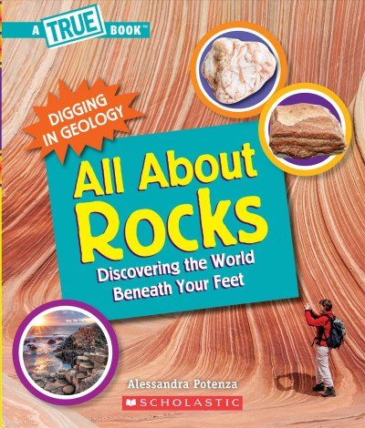 Cover looks like a rock wall in the background and a person with a backpack taking pictures of the rock wall.  There's smaller photos of other types of rocks.