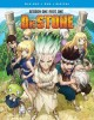 Dr. Stone. Season one, part one