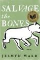 Salvage the bones : a novel