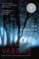 An uncertain place : a Commissaire Adamsberg mystery