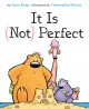It is (not) perfect