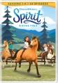 Spirit riding free. Seasons 1-4