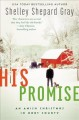 His promise : an Amish Christmas in Hart County