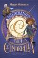 Disenchanted : the trials of Cinderella