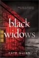 Black widows / A Domestic Thriller